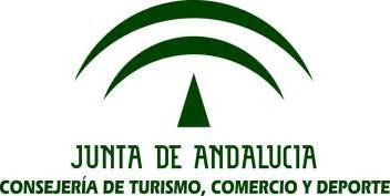El Gobierno andaluz modifica la Ley del Deporte para delimitar cómo pueden acreditarse las competencias profesionales. El Consejo aprueba un decreto ley tras el acuerdo alcanzado con el Gobierno central al respecto.