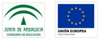 Acreditación Profesional de Instrucción en Yoga. Relaciones definitivas de personas solicitantes seleccionadas y excluidas. Junta de Andalucía