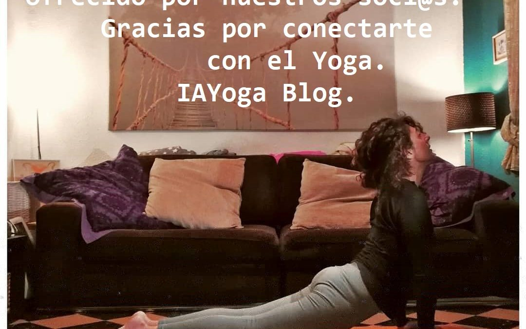 IAYoga. Yoga en casa. Online por diversas plataformas. Gratuito. Ofrecido por nuestros soci@s. Gracias por conectarte con el yoga. https://iayoga.org/blog/