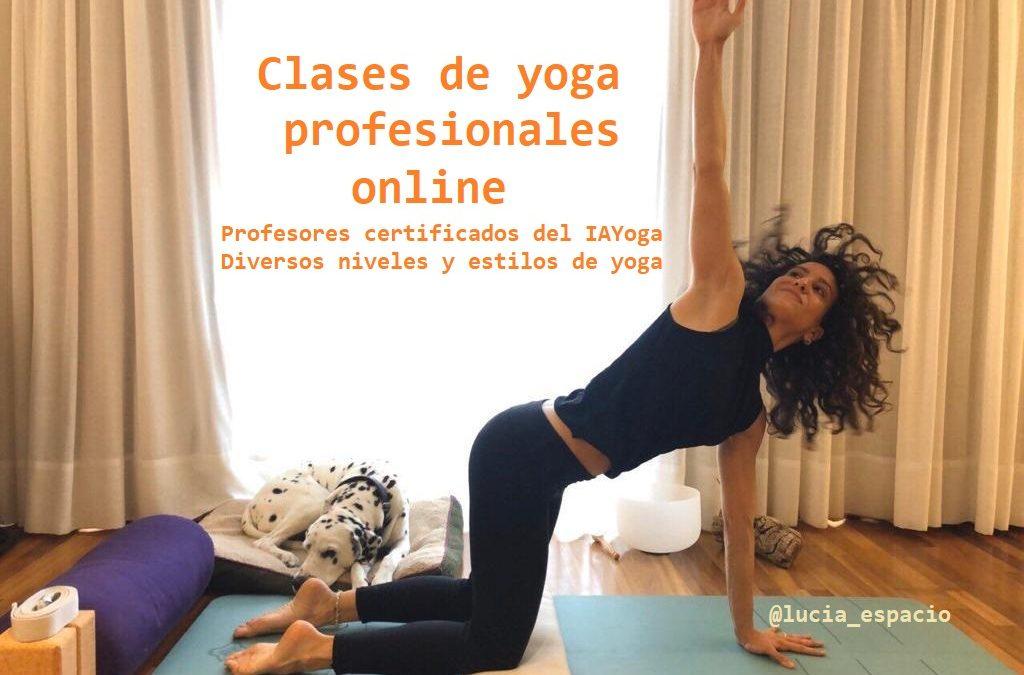 Clases de yoga profesionales online. Profesores certificados del IAYoga. Diversos niveles y estilos de yoga
