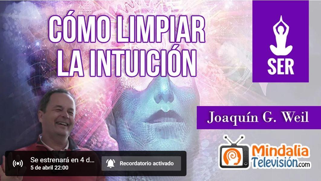 """Vídeo + Artículo: """"¿Cómo limpiar la intuición?"""" (Incluye práctica) Conferencia de Joaquín G Weil grabada por Mindalia."""