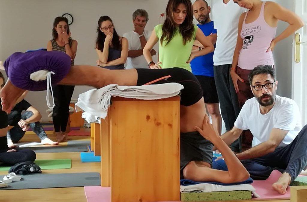Círculo de profesores IAYoga. Intercambio gratuito de clases de yoga.